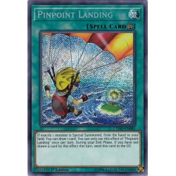 CYHO-EN081 Pinpoint Landing