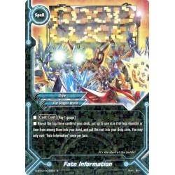 BFE H-BT04/0043EN Foil/R Fate Information