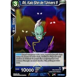 DBS TB1-034 C Rô, Kaïo Shin de l'Univers 9