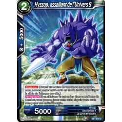 DBS TB1-043 C Hyssop, assaillant de l'Univers 9