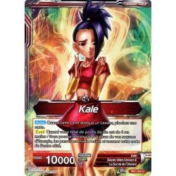 DBS TB1-002 Foil/C Kale