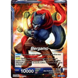 DBS TB1-026 Foil/C Bergamo