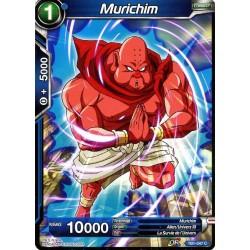 DBS TB1-047 Foil/C Murichim
