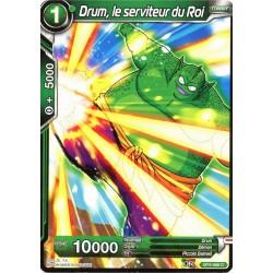 DBS BT4-066 C Drum, le serviteur du Roi