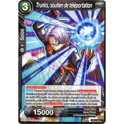 DBS BT4-102 C Dimension Support Trunks