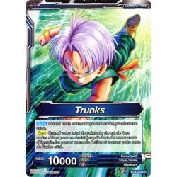 DBS BT4-023 Foil/UC Trunks