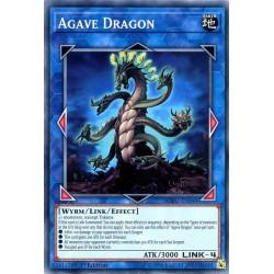 YGO SOFU-EN048 Agave Dragon