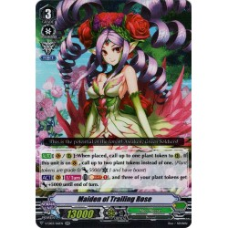 CFV V-EB03/016EN RR Maiden of Trailing Rose