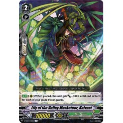 CFV V-EB03/030EN R Lily of the Valley Musketeer, Kaivant