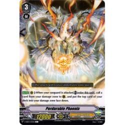 CFV V-EB03/034EN C Padrable Phoenix