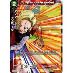 DBS TB2-009 R C-18, le pacte secret