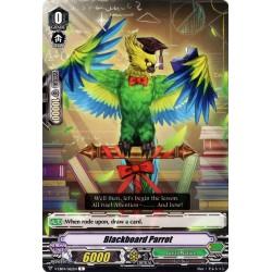 CFV V-EB04/062EN C Blackboard Parrot