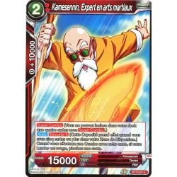 DBS BT5-012 C Kamesennin, Expert en arts martiaux