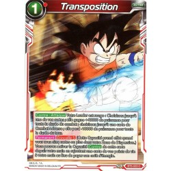 DBS BT5-023 C Transposition