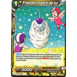 DBS BT5-093 C Freezer maître de lui