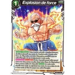 DBS BT5-115 C Explosion de force