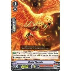 CFV V-BT03/024EN RR Rising Phoenix