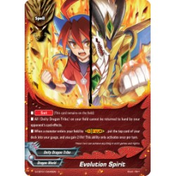 BFE S-CBT01/0045EN C Evolution Spirit