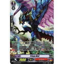 CFV G-RC02/064EN R Prism Bird