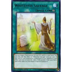 YGO DANE-EN098 Whitefish Salvage
