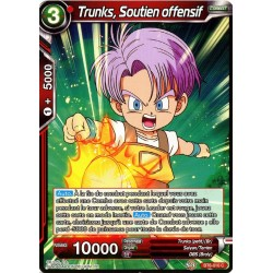 DBS BT6-010 C Trunks, Soutien offensif