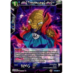 DBS BT6-047 R Babidi, Superviseur de la Destruction