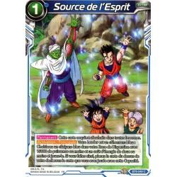 DBS BT6-049 C Source de l'Esprit