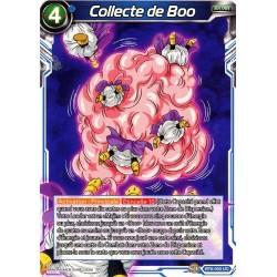 DBS BT6-050 UC Collecte de Boo