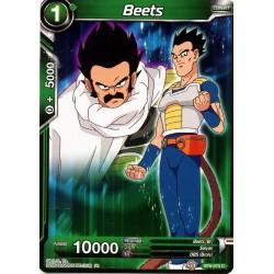 DBS BT6-073 C Beets