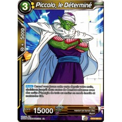 DBS BT6-088 C Piccolo, le Déterminé