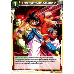 DBS BT6-104 C Amour paternel salvateur