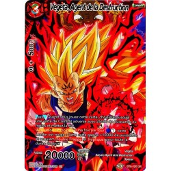 DBS BT6-120 DR Vegeta, Agent de la Destruction