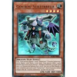BLHR-FR084 Unterterror-Guru