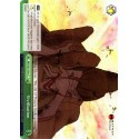 BNJ/SX01-034 CC Vivification