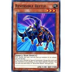 RIRA-EN035 C Reversible Beetle