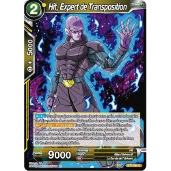 DBS BT7-080 C Hit, Expert de Transposition