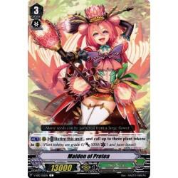 CFV V-EB10/056EN C Maiden of Protea