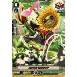 CFV V-EB10/065EN C Dancing Sunflower