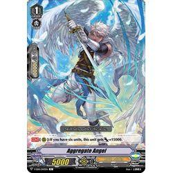 CFV V-EB14/043EN C Aggregate Angel