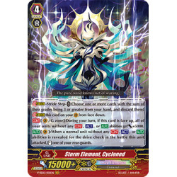 CFV V-SS05/001EN GR Storm Element, Cycloned