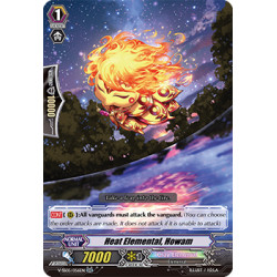 CFV V-SS05/056EN RR Heat Elemental, Howam