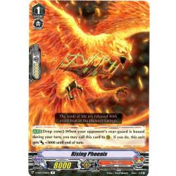 CFV V-SS03/046EN R Rising Phoenix