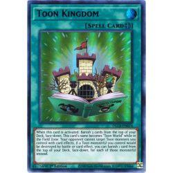 YGO DLCS-EN074 Toon Kingdom