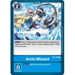 BT2-094 C Arctic Blizzard...