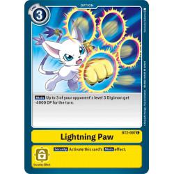 BT2-097 C Lightning Paw Option