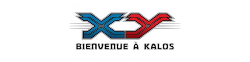 Purchase In the unity XY | card Pokemon Hokatsu.com